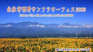 明野サンフラワーフェス2009 /北杜市