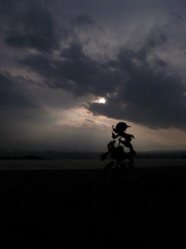 坂本龍馬な向日葵